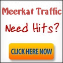 meerkat traffic